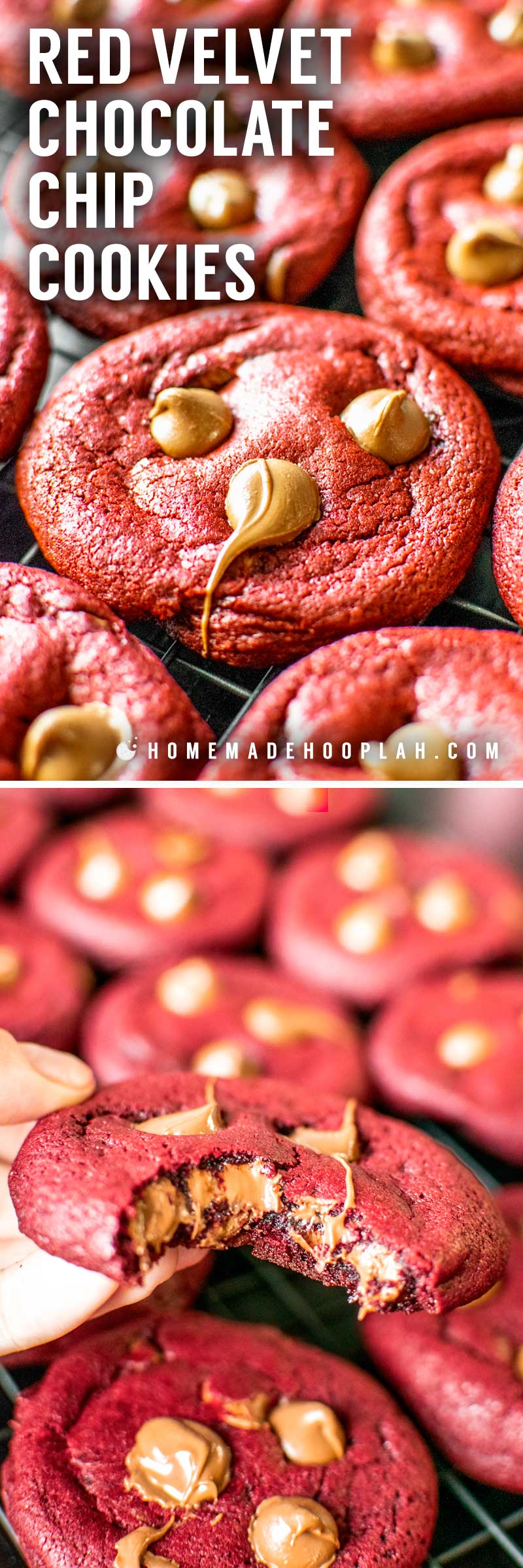 Red Velvet Chocolate Chip Cookies! These red velvet cookies are baked soft and chewy and laced with milk chocolate chips. Perfectly festive for holidays, cookie exchanges, or an easy dessert. | HomemadeHooplah.com