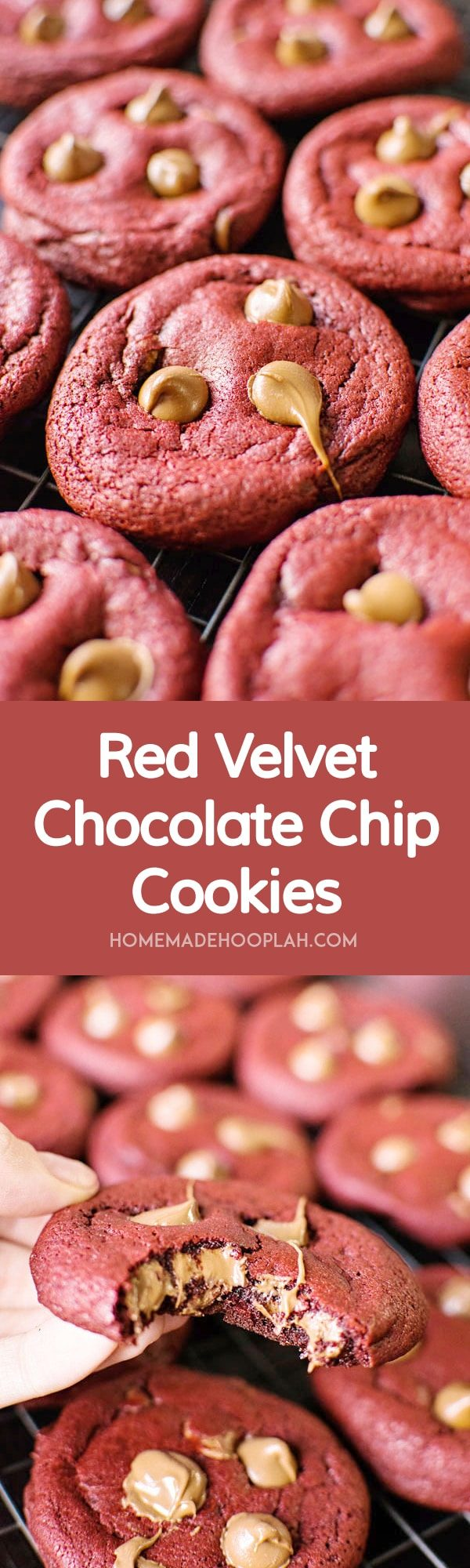 Red Velvet Chocolate Chip Cookies! Deep red velvet cookies that are soft and chewy and laced with milk chocolate chips. | HomemadeHooplah.com