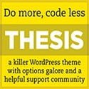 Thesis Themes
