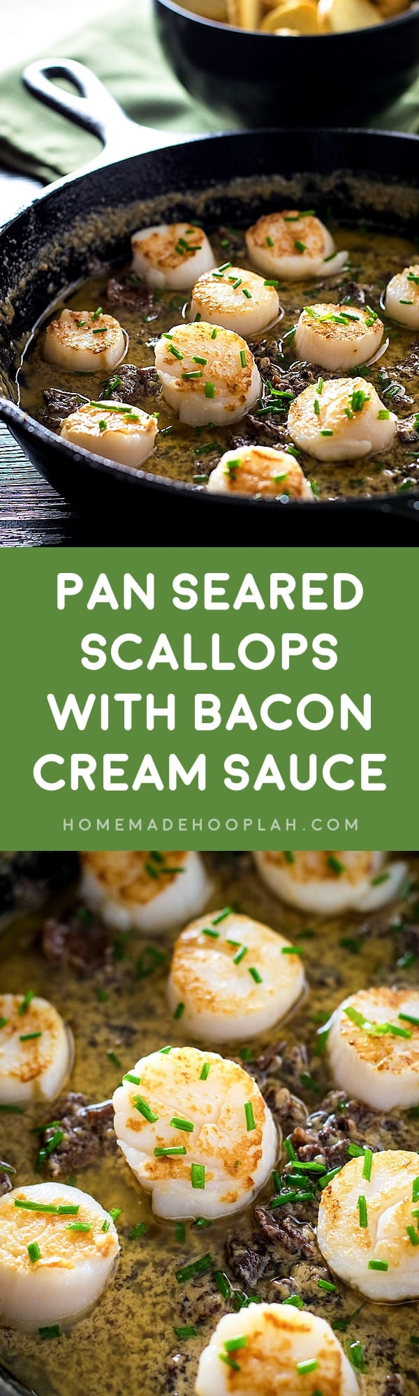 Pan Seared Scallops with Bacon Cream Sauce! An easy dinner made with tender scallops that are pan seared to golden perfection on a bed of creamy and cheesy bacon sauce. | HomemadeHooplah.com