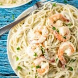 Creamy Pesto Shrimp Pasta! Tender shrimp pasta in a creamy pesto sauce makes up this one-pot 30-minutes-or less recipe. A perfect dinner for seafood lovers any night of the week! | HomemadeHooplah.com