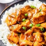 Crock Pot Bourbon Chicken! This classic style recipe for bourbon chicken is an easy, crowd-pleasing meal that's made right in your crock pot. Lots of flavors come together to create this dish but you can easily adjust the amounts to suit your taste! | HomemadeHooplah.com
