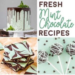 23 Fresh Mint Chocolate Recipes