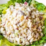 Waldorf Salad! Sweet apples and pears are mixed with fresh celery and crunchy pecans and then tossed in a sweet Miracle Whip dressing. Perfect for potlucks and parties! | HomemadeHooplah.com