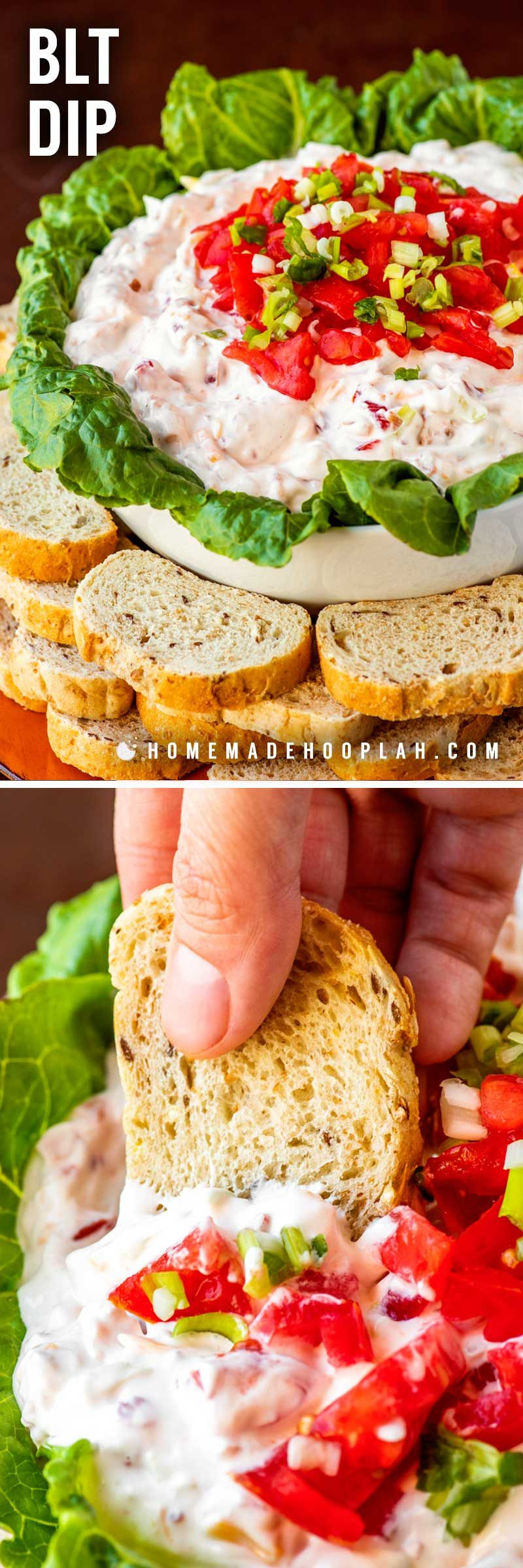 BLT Dip! The classic sandwich gets the appetizer treatment with this creamy chilled BLT dip. Line the bowl with lettuce leaves for a classy look and serve with toasted bread for an authentic BLT taste. | HomemadeHooplah.com