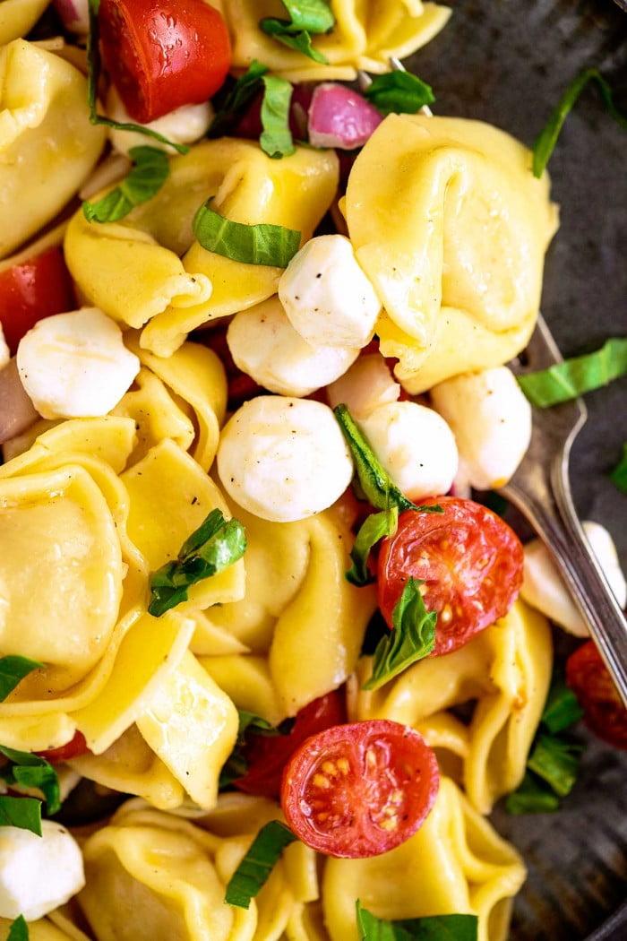 Close up view of mixed tortellini pasta salad.